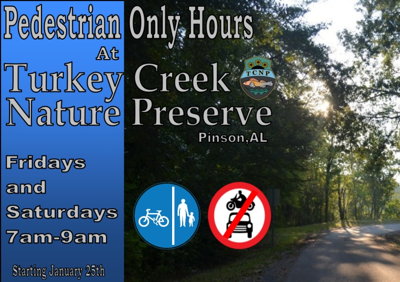 Pedestrian only hours