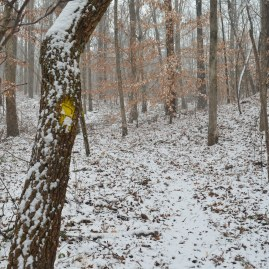 2014 snow 23
