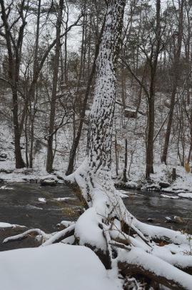2014 snow11