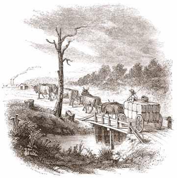 alabama settlers