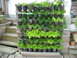 Vertical garden_bottles
