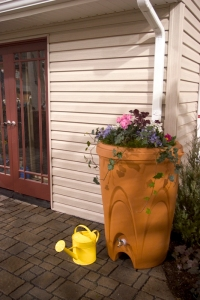 rain barrel - flowers