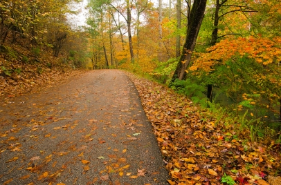 Fall on Turkey Creek Road