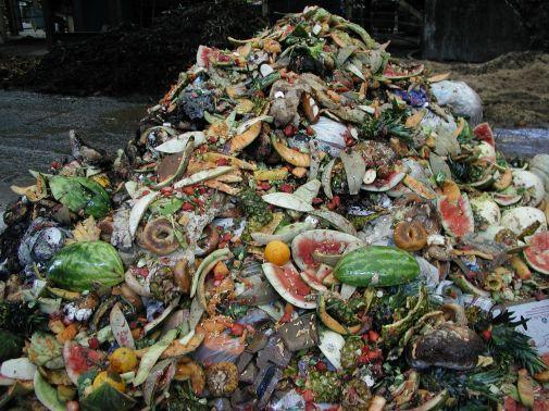 food_scraps_pile