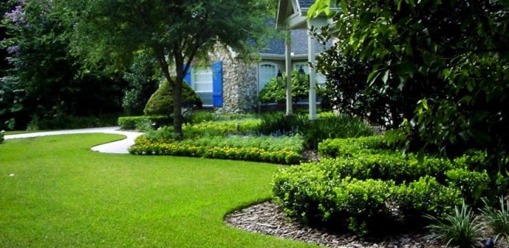 lawn_suburban